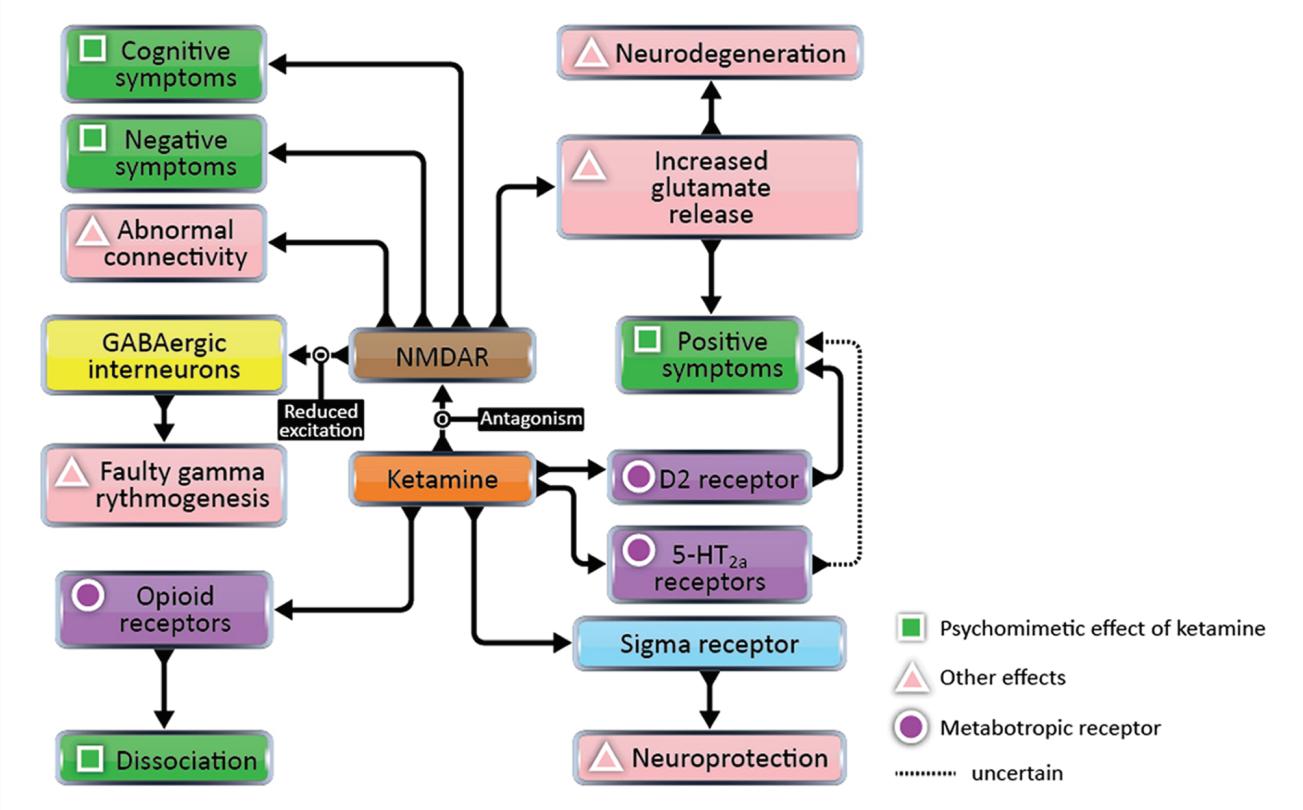 Schizophrenia/Psychosis/Life Span