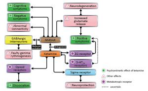 Frolich - ketamine hypothesis of schizophrenia